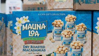 Roasted Macadamia Nuts from Costco Hawaii