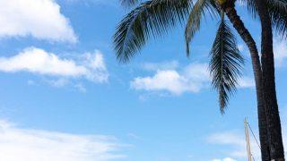 Afternoon in Waikiki (Oahu)