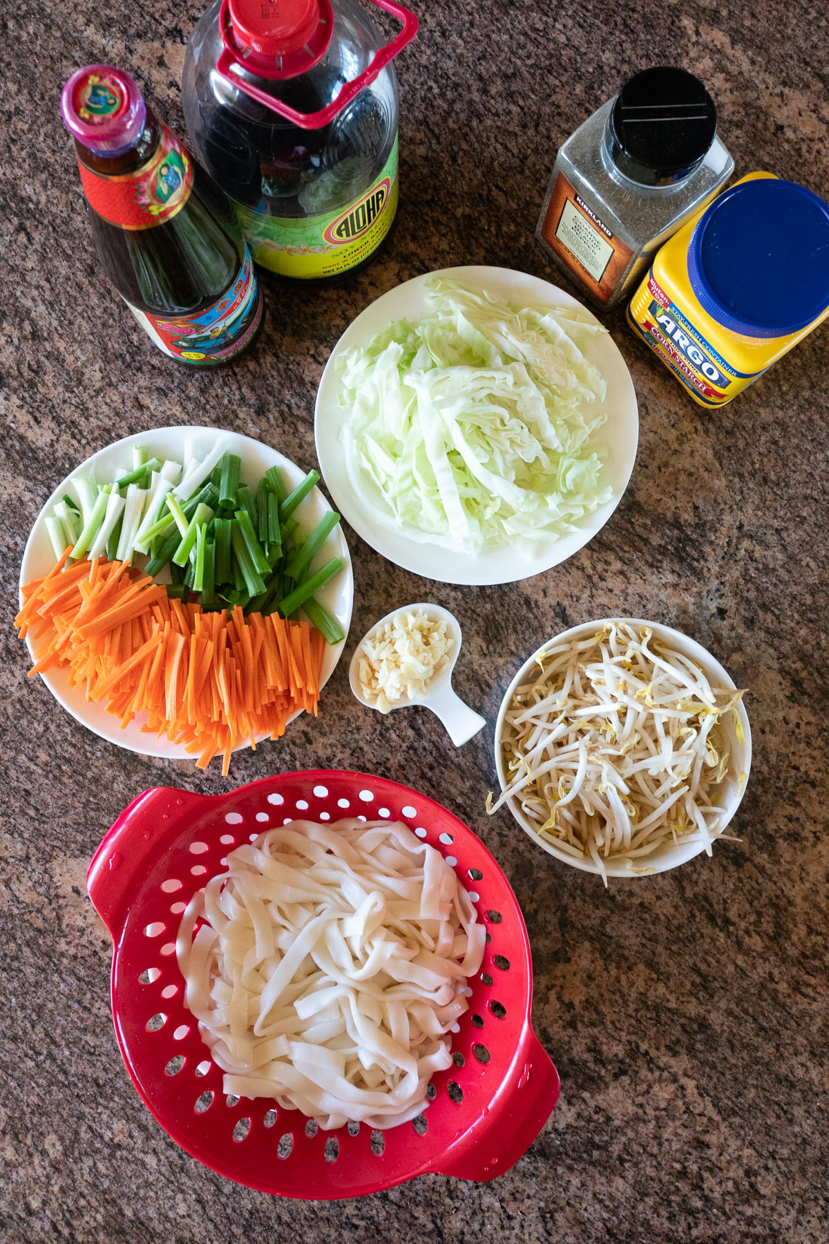 Ingredients for Chow Fun: chow fun noodles, carrots, green onions, mung bean sprouts, cabbage, garlic. Soy sauce, oyster sauce, cornstarch, and black pepper.